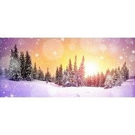 Christmas Sunrise/Sunset, Lighted Backdrop