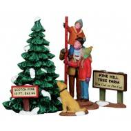 Picking The Tallest Tree