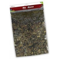 SCATTER MOSS GREEN 120GM